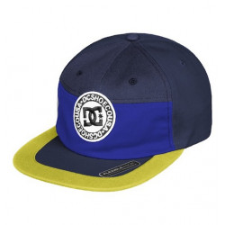 Casquette DC The Vial Black Iris