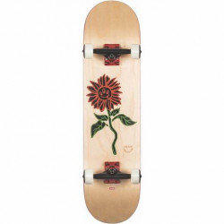 Skateboard GLOBE G2 Bloom Natural 8""
