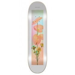 Skateboard SOVRN Playground 8