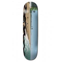 Skateboard ELEMENT Landscape South Africa 8