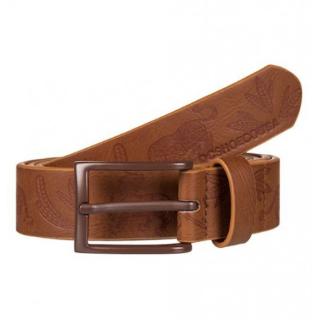 Ceinture DC Full Sails Coffee Bean